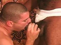 hardcore gay sucking meaty black poles