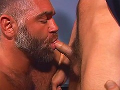 Bearded bear opens his mouth for dick