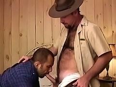 Big hairy gays enjoying mouthfuls of cock